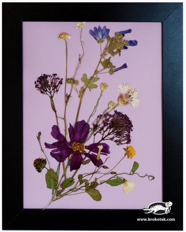 Pressed flower composition