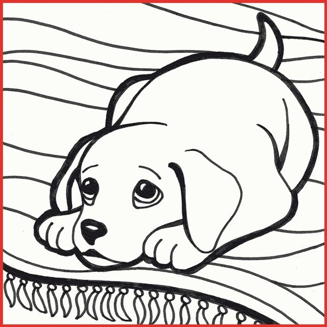 ausmalbilder welpen kostenlos hunde welpen malvorlagen