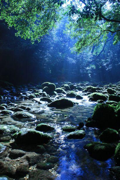lifeisverybeautiful:  Yaku-shima island, Japan via GANREF