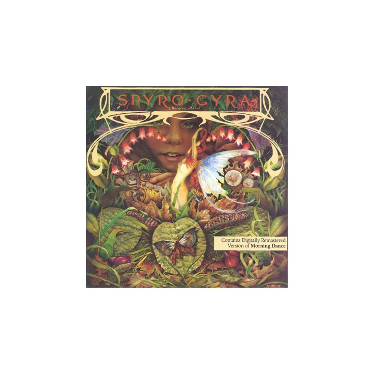Spyro gyra - Morning dance (CD)
