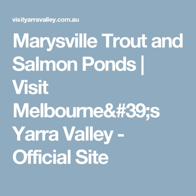 Marysville Trout and Salmon Ponds | Visit Melbourne's Yarra Valley - Official Site