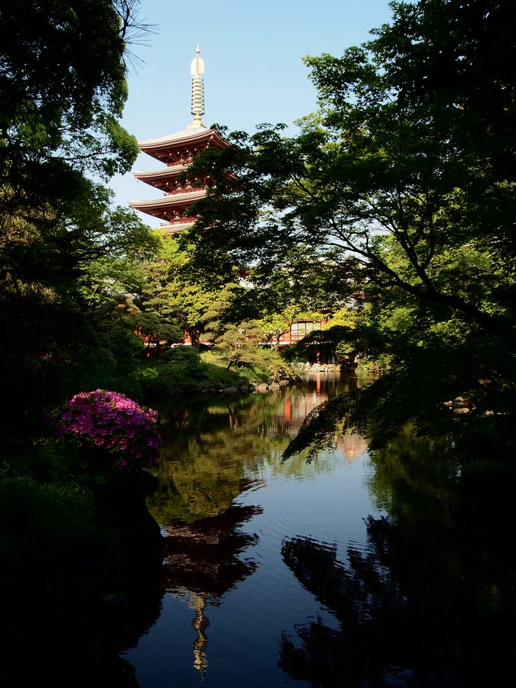 pagoda -the garden of Denbouin, Senso temple, Asakusa-