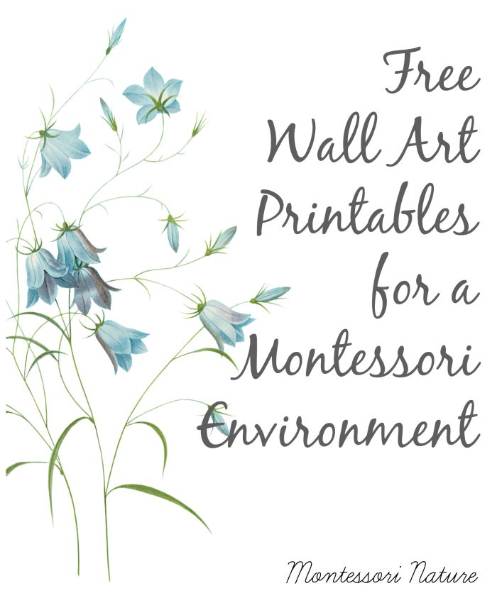 Free Wall Art Printables for a Montessori Environment.
