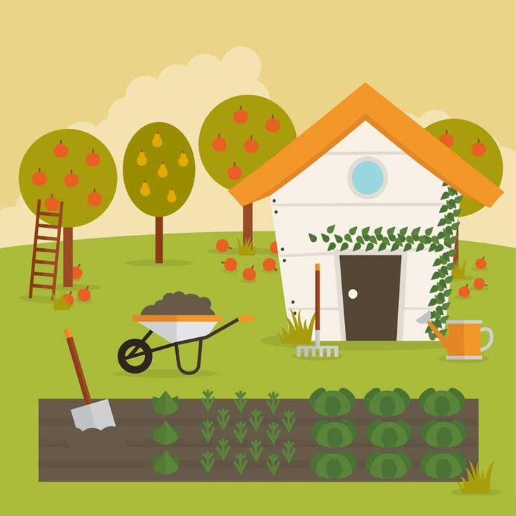 рисунки сад огород