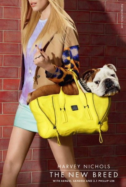 harvey nichols fashion ad campaign...my arm would fall off if I tried to carry Dozer around like that