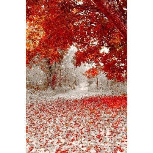 Tablou pe panza luminos- Padure rosie - Unic in Romania - PROMOTIE
