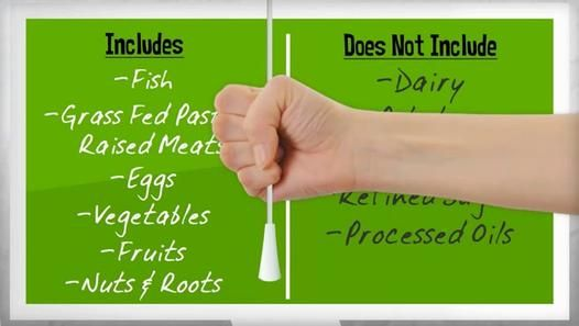 What is the Paleo Diet - Paleolithic Diet Basics for Beginners
