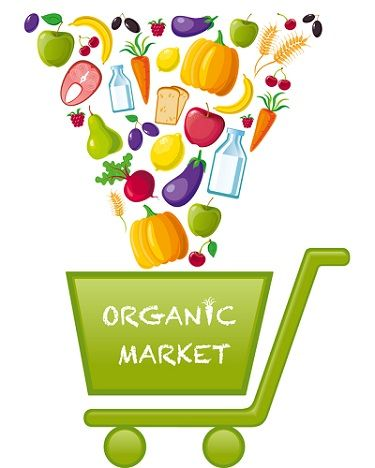 Tiendas online de alimentos ecologicos