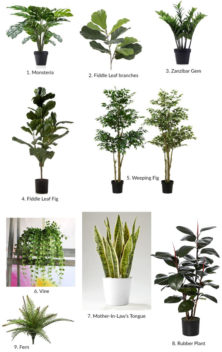 Best 25 artificial plants ideas on pinterest for Artificial plants for decoration