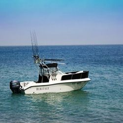 37 best fishing frenzy images on pinterest boating for Deep sea fishing dana point