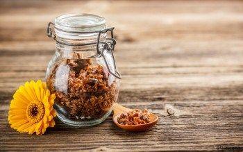 La propolis, un puissant antibiotique naturel