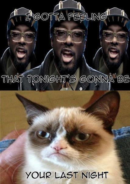 Grumpy cat Good night meme | Grumpy Cat!!! | Pinterest
