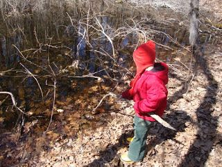What are Vernal Pools?  Learning about and exploring Vernal Pools-- Homeschool science