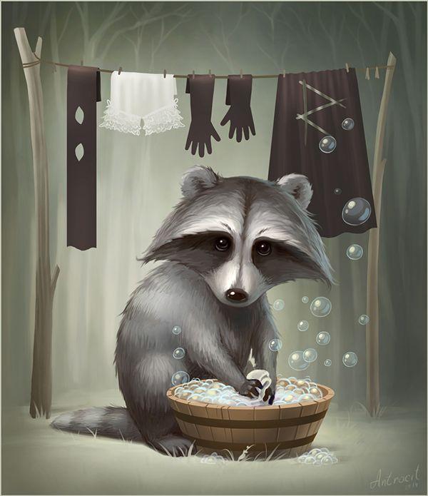 Raccoon on Wacom Gallery