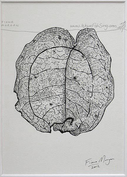 WhereFishSing.com Fiona Morgan, pen drawing 'Meditative Study' #WhereFishSing LEAF Matted Nature illustration ORIGINAL Botanical Drawing, Black & White, pen & ink, zen, mindfulness
