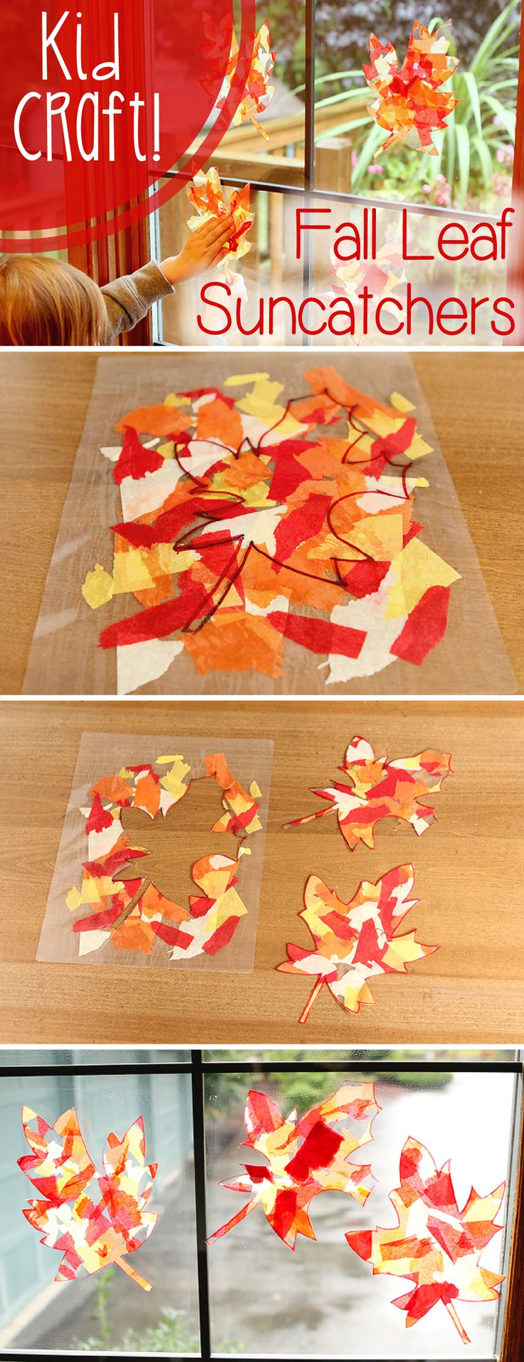 Fall color leaf sun-catchers that will brighten up your home while also being a fun craft for the kids.