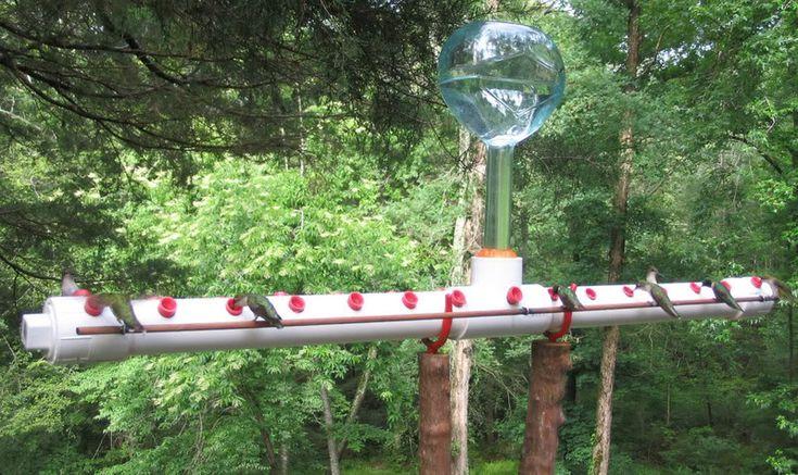 346 best images about HUMMINGBIRDS Garden ideas on Pinterest