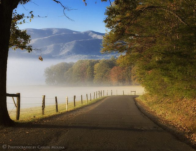 Cades Cove. Great Smokey Mountains National Park. Tennesee. Get there super early !