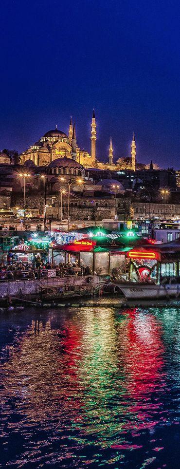 Экскурсии в Стамбуле. Исмаил Мюфтюоглу www.russkiygidvstambule.com Индивидуальные экскурсии по Стамбулу. Мечеть Султан Сюлеймана, Стамбул
