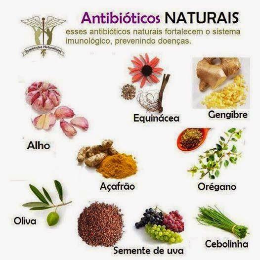 panorama:       Spa Lapinha da Dica de Antibióticos Naturais...