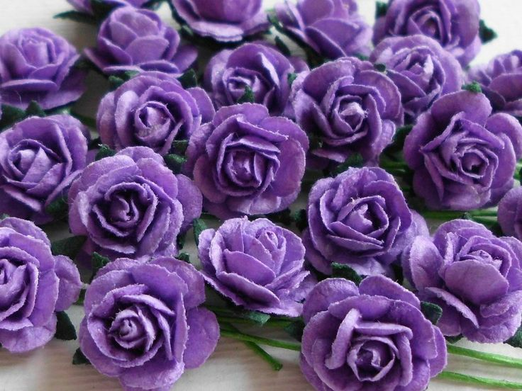 100 CUTE MULBERRY ROSES - 10MM - BEAUTIFUL PURPLE!
