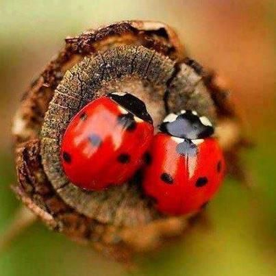 <3 Together....Forever <3