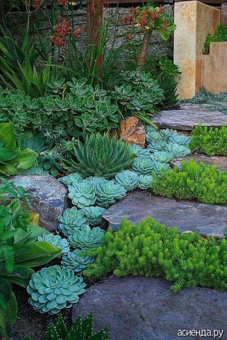 Beautiful decoration for garden path