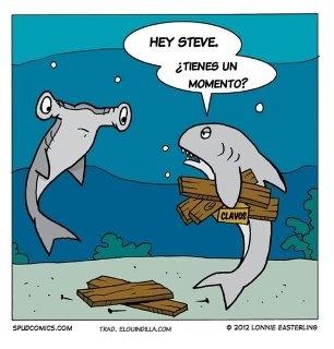 Humor de tiburones
