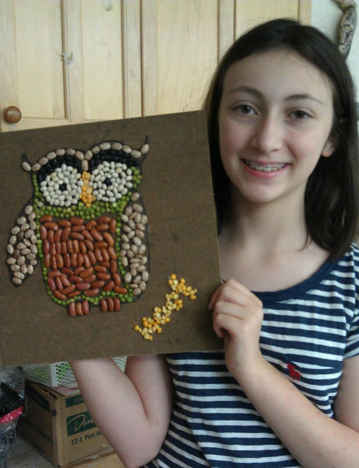 Seed and bean mosaic owl
