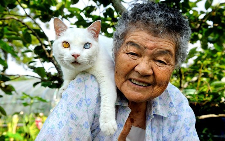 Nine years ago, Japanese photographer Miyoko Ihara began snapping pictures of the relationship between her grandmother and her odd-eyed white cat. Miyoko's grandma Misao found the abandoned cat in a shed on her land and the pair have barely been apart since.
