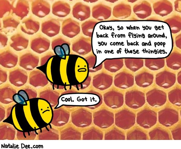 Natalie Dee comic: bee orientation