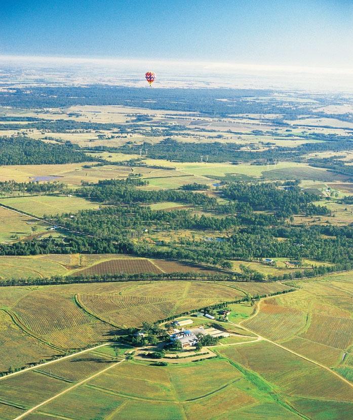 Aerial view, Hunter Valley. Hot Air Ballooning