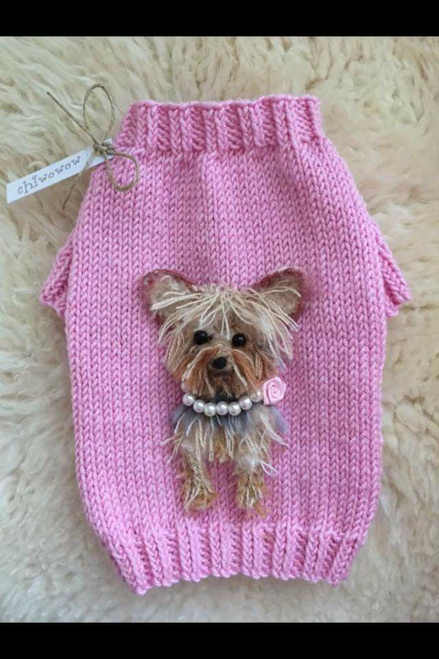 521 best Yorkies images on Pinterest | Doggies, Pets and ...