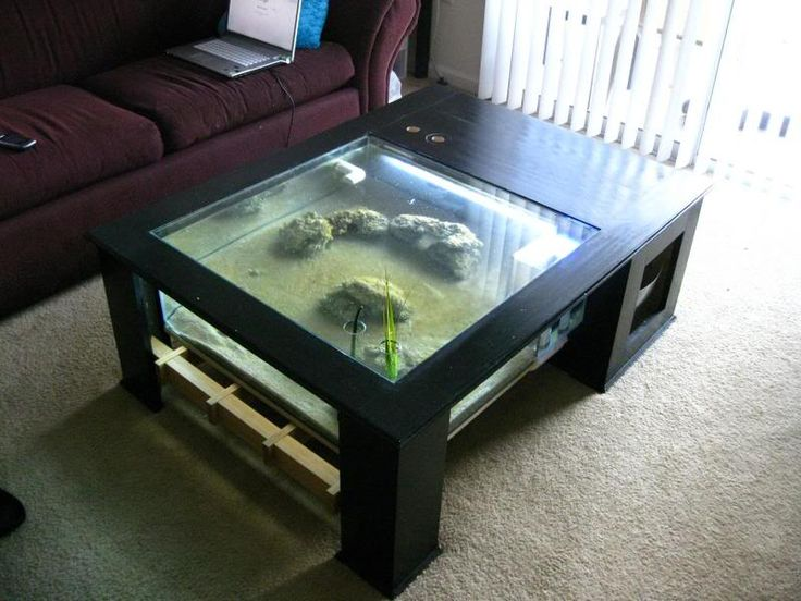 Best 25+ Coffee table aquarium ideas on Pinterest | How to ...
