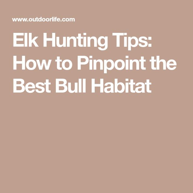 Elk Hunting Tips: How to Pinpoint the Best Bull Habitat