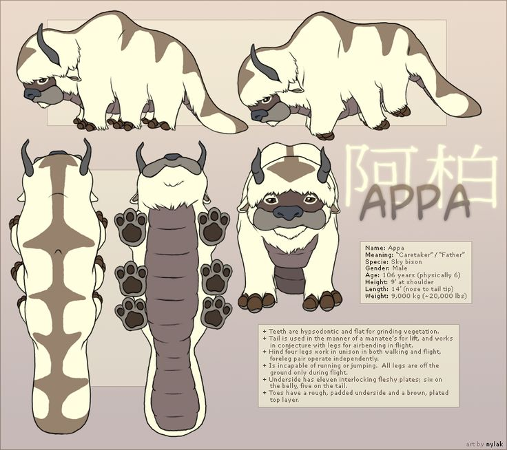 Avatar : Appa Reference Sheet by ~Nylak on deviantART