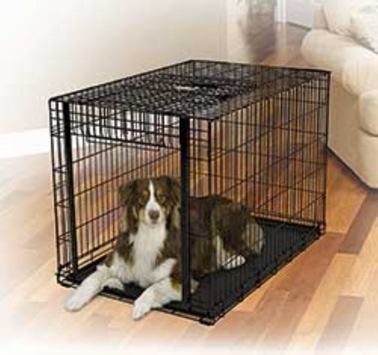 dog crate plastic pansize 42 inches x 28 inches replacement crate pans for midwest quick