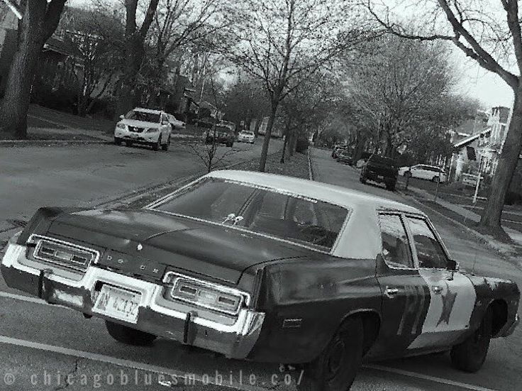 We are in high speed pursuit northbound on Cortland Avenue. Black and white 1974 Dodge sedan with Illinios plates. Request assistance. . #chicagobluesmobile #briansbluesmobile #bluesbrothers #danaykroyd #johnbelushi #bluesmobile #chicago #dodge #mopar #starcar #moviecars #cosplay #comiccon #popculture #80s #cars #carsofinstagram #wizardworld #parkridge - Use code witblade at checkout for 10% off Wizard World 2018 tickets!