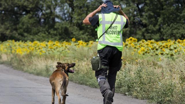 Policjant aresztowany za sprzedaż szczątków pochodzących z MH17 #popolsku