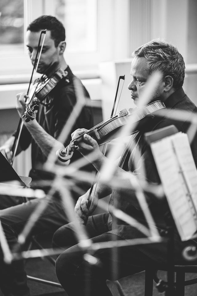 First violin section wth our concert master Alexander Hledik.