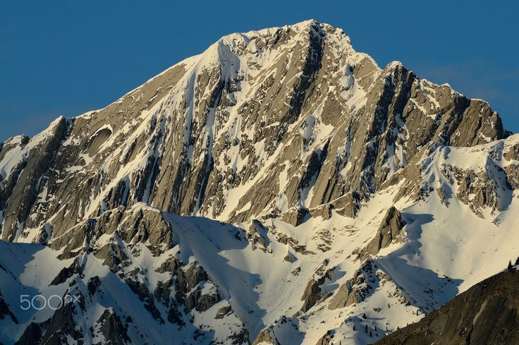 Majestic Giant - Shaded rock face climbing above the snowline
