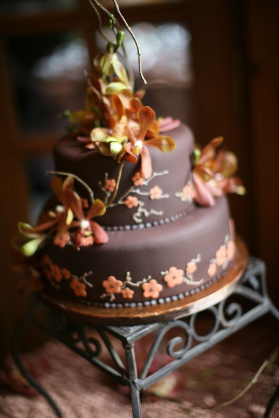 Cake Creations - Unique Cakes