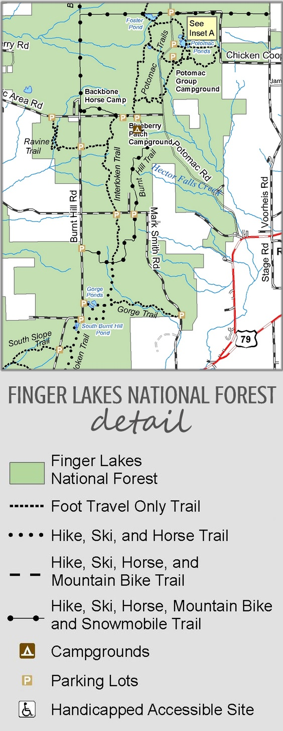 Finger Lakes National Forest Map (detail). US Forest Service.  The only national forest in New York State.  A four-season recreation experience.  The forest has over 30 miles (50 km) of interconnecting trails that traverse gorges, ravines, pastures, and woodlands.