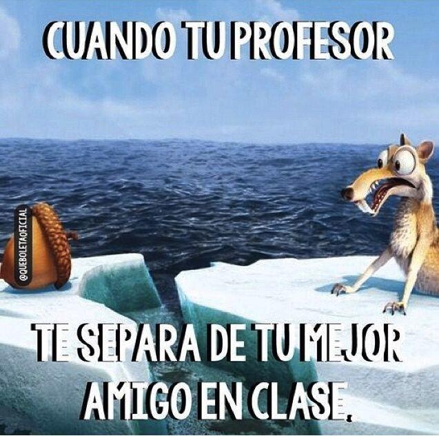 Tu mejor amigo en clase.