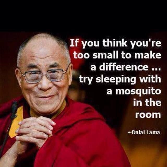 If you think you're to small to make a difference....try sleeping with a mosquito in the room.