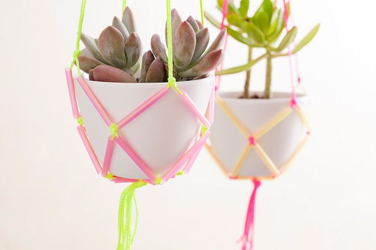 You've seen 'em. You've stopped in your tracks. And if you're like us, you totally swooned. They're the coolest thing to hit green home decor since terrariums—yep, we're talking hanging planters. And while our Pinterest boards are full of pretty potted options, none of them popped quite the way we want them to—you know for us, color is a make it or break it detail. Our solution: bring on the neon. Using nothing but neon cord and neon straws (you know you have some stashed in that kitchen…