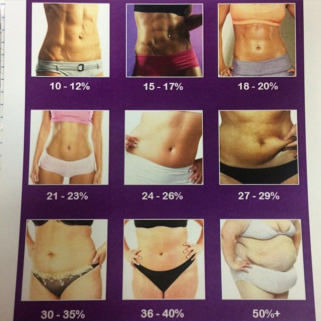 body fat percentage endomorph