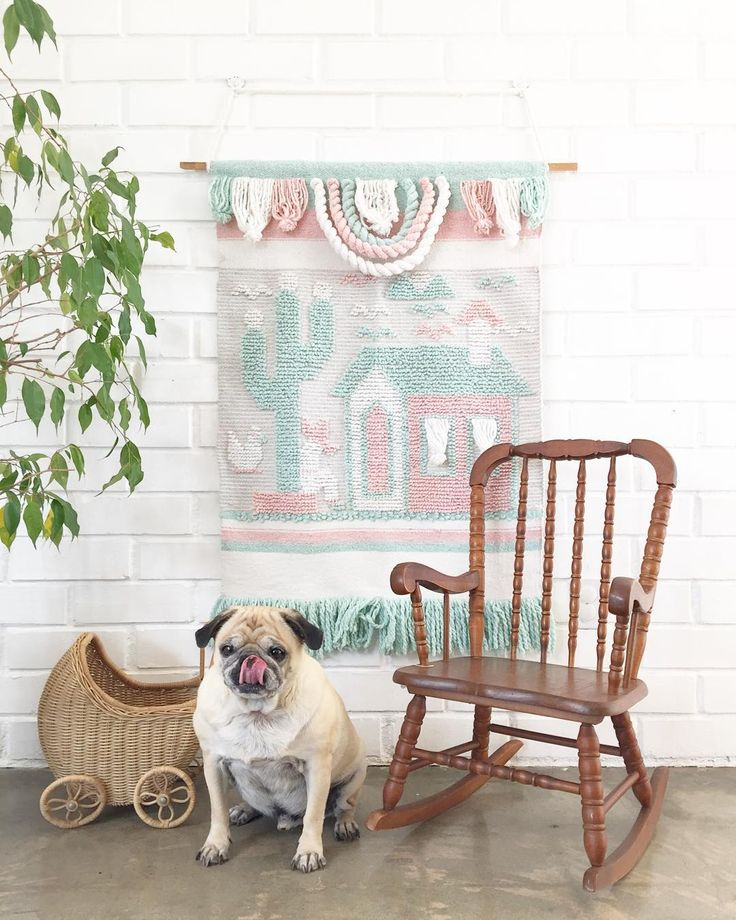 """A gift for the kiddos  Kid's Rocking Chair SOLD Wicker Carriage SOLD Woven Wall Hanging SOLD Pug """"not for sale""""  DM for details if interested ✨ _______________________________________________________ #vintagehome #vintagehomedecor #midcentury #midcenturymodern #home #retro #bohemian #boho #rustic #farmhouse #macrame #pug #pugsofinstagram #industrial #country #modern #vintage #smallbusiness #shopsmall #6thanddetroit"""