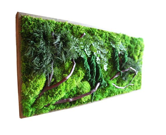 """Plant Painting, also known as """"living walls"""" or """"green walls"""" are popular, but their ongoing maintenance is seldom viable. Artisan Moss is a breakthrough in using 100% REAL PLANT LIFE, sustainable, versatile and beautiful natural elements for walls, featuring a variety of flora, preserved moss, botanical materials and plants.  Our handcrafted """"plant paintings"""" are ZERO MAINTENANCE green walls that are remarkably light-weight, utilizing all real preserved plants. Made with exceptional care…"""
