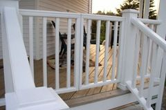 Closed gates with dog on deck
